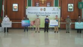 Pemkot Yogyakarta Terima Bantuan Hewan Kurban